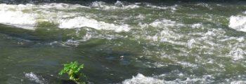 The Turbulent Stream